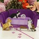 lovedup-cats-sofa